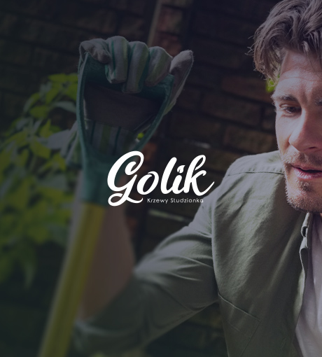 Realizacja Golik
